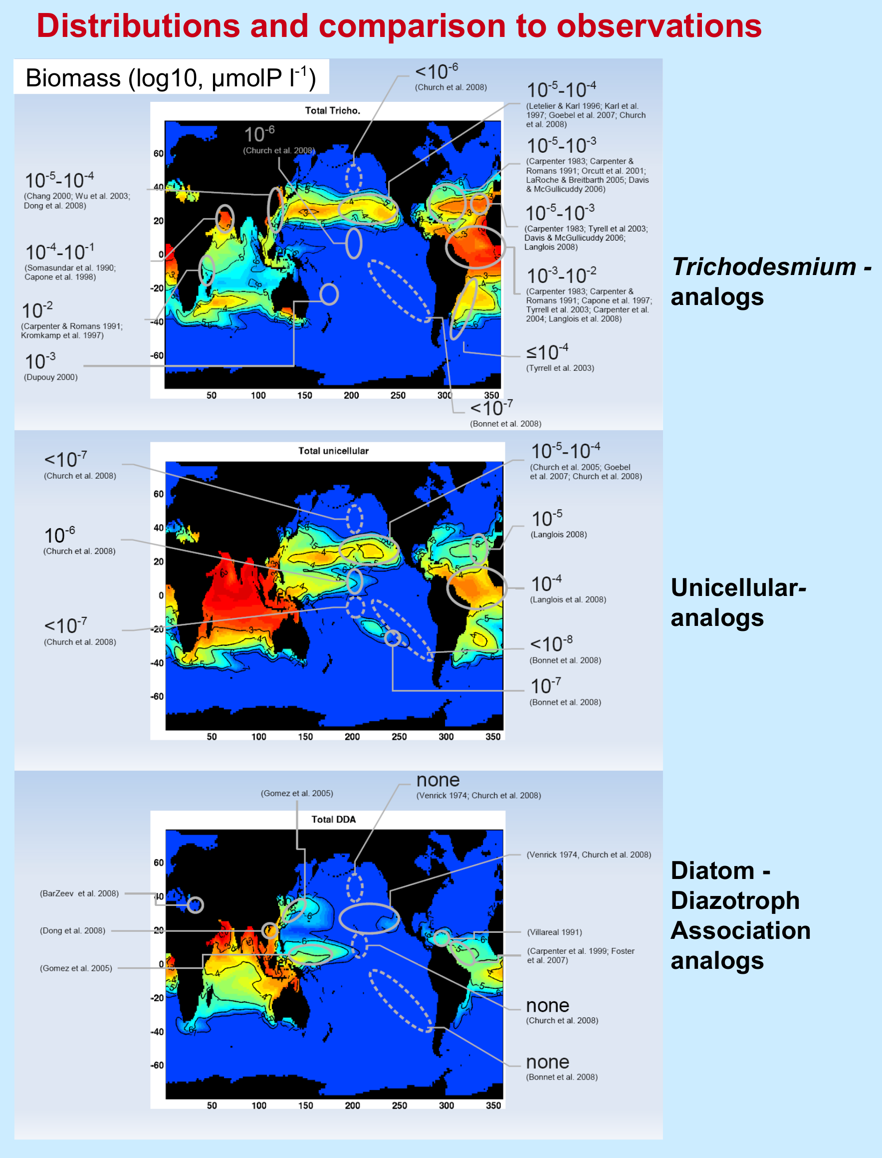 Figure 3. Distribution of modeled Trichodesmium analog biomass compared with observations (top panel), the same but for unicellular analogs (middle) and Diatom-Diazotroph Association analogs (bottom). (Published observations converted to estimated phosphorus biomass).