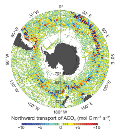 Figure 3a: Vertically integrated northward ACO2 transport determined from a 5 day mean in December 2006.