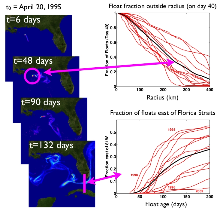 Figure 3: The Forward Integration - Float fraction outside radius indicated (on day 40) (upper panel), Fraction of floats east of the Florida Straits (lower panel) - Image source: Ross Tulloch