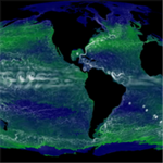 Various fields from an integration of the darwin model with 78 types of phytoplankton in MITgcm with ECCO2 physics: sea-surface temperature, subsurface-velocity, nitrate and chlorophyll-a